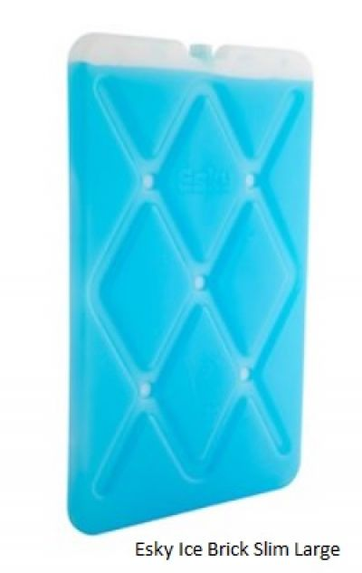 COLEMAN Esky Ice Brick Large